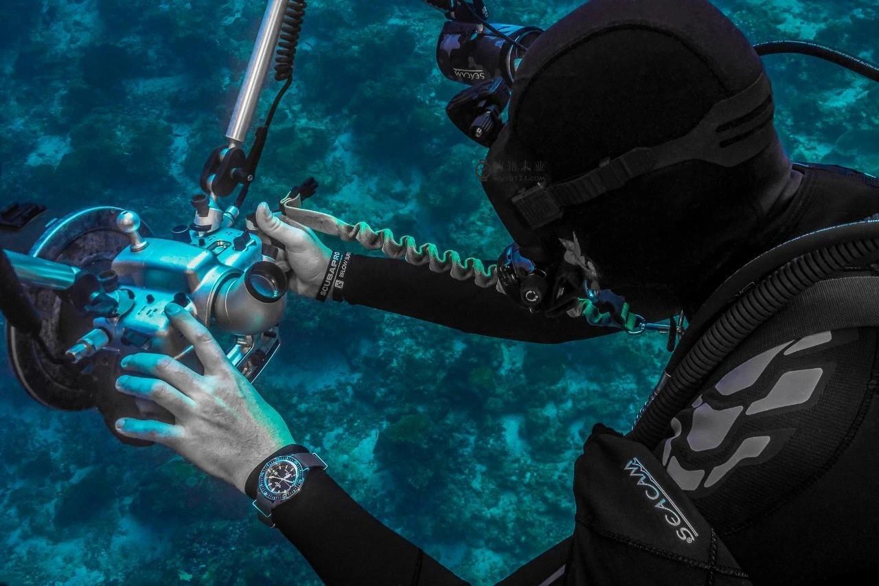 万元以内最值得买的潜水表,雪铁纳